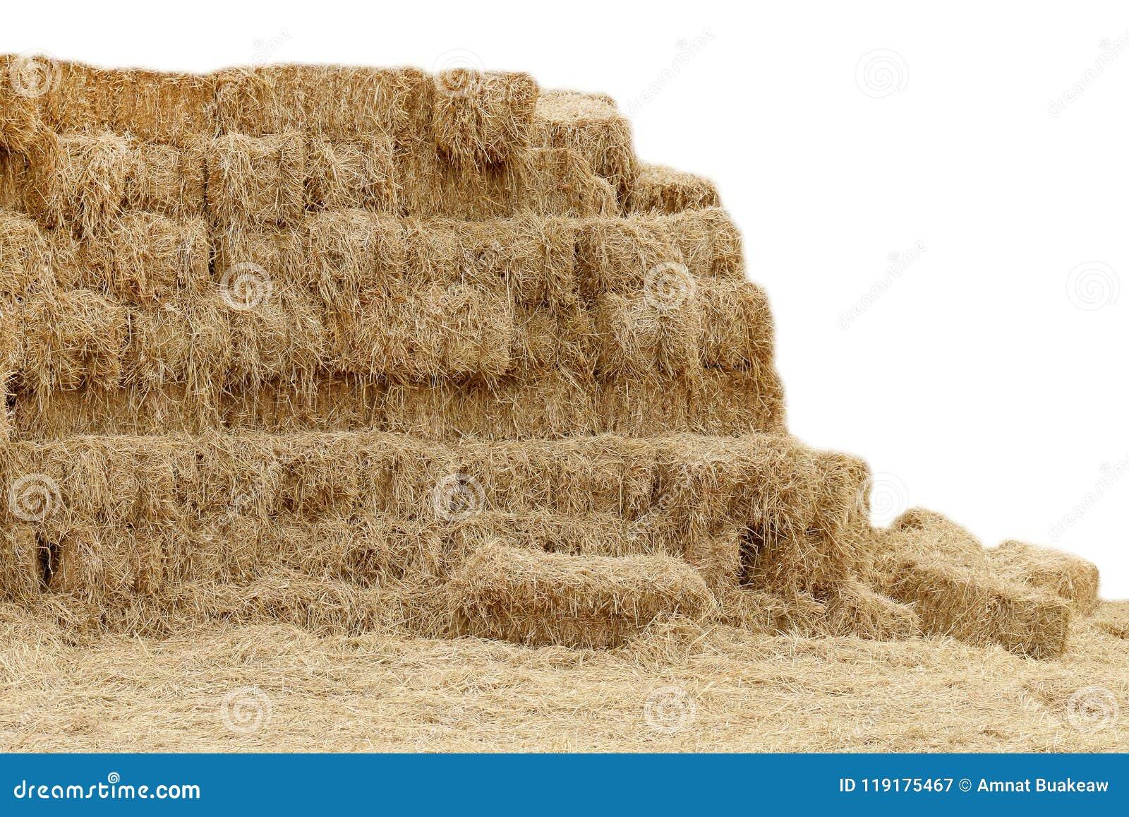 Straw hey, Mountain shape straw hay dry, Straw many on white background, Straw block cube, Hay dry backdrop mountain shape