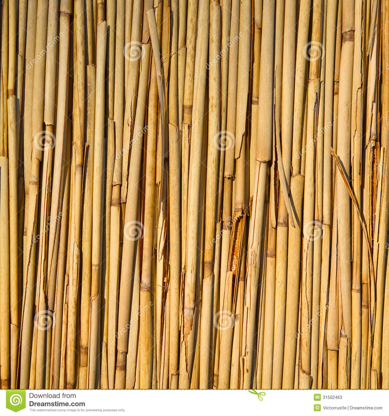 Straw Reed Background Texture Pattern Stock Image - Image ...