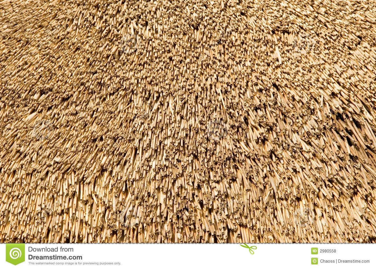 Straw On A Roof Stock Photo Image Of Nobody Haulm