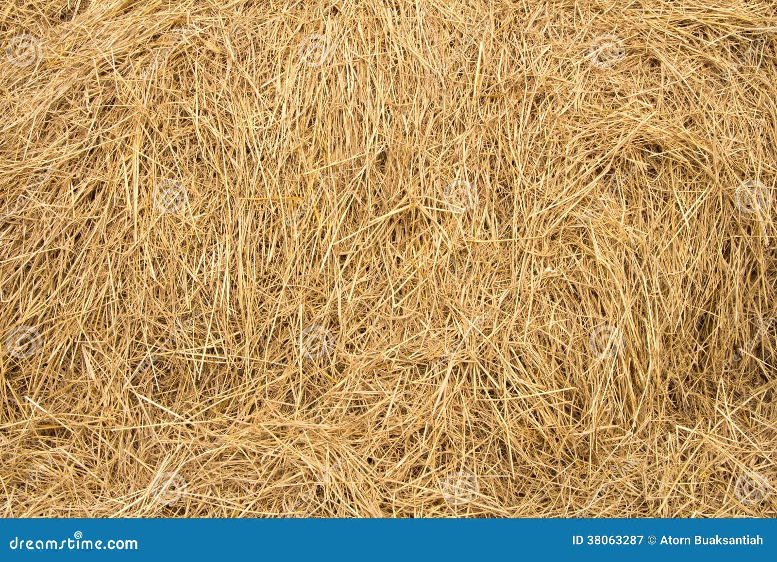 Straw texture background