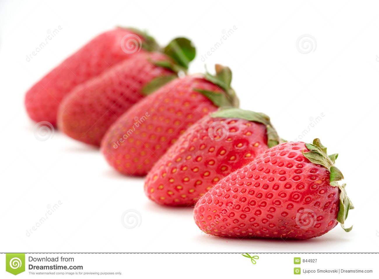 Strawberries lined up