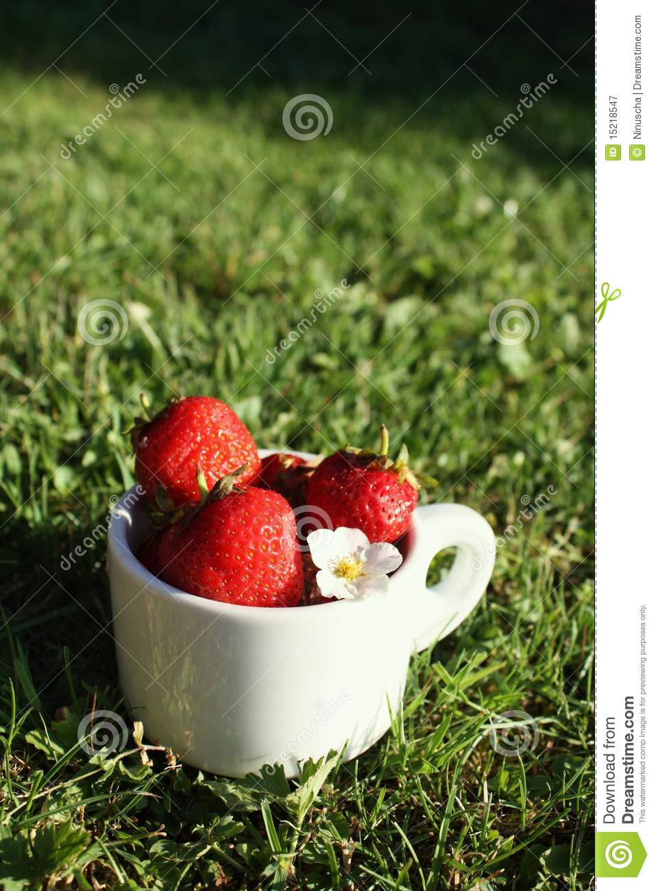 Strawberries in the white cup