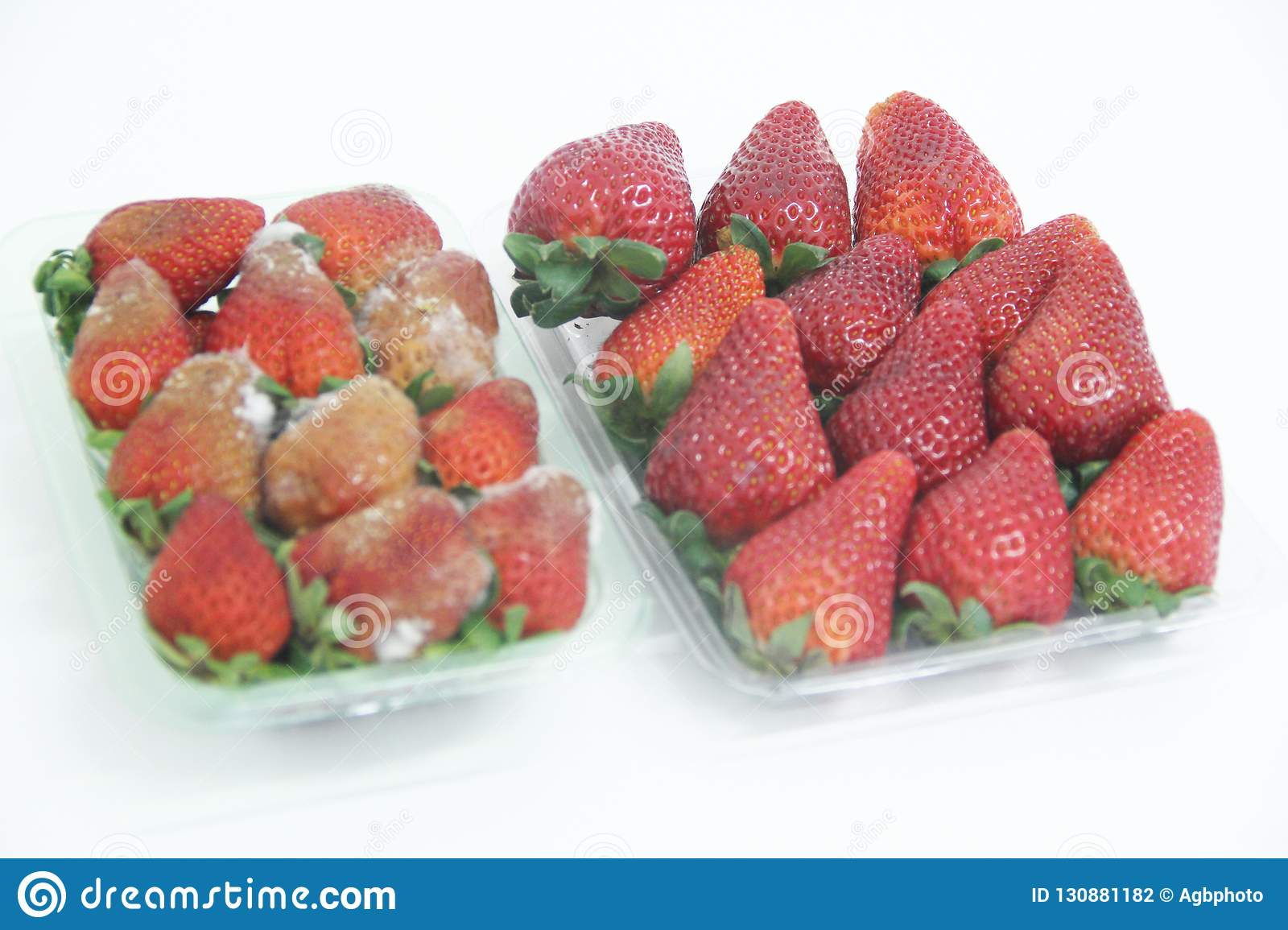Strawberry food agriculture isolated mold delicious healthful fruit Sao Paulo Brazil