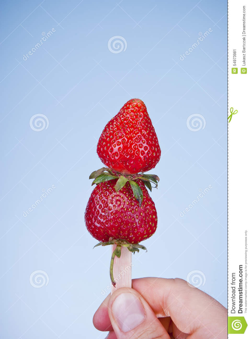 Fresh strawberry ice cream concept. Strawberries on stick.