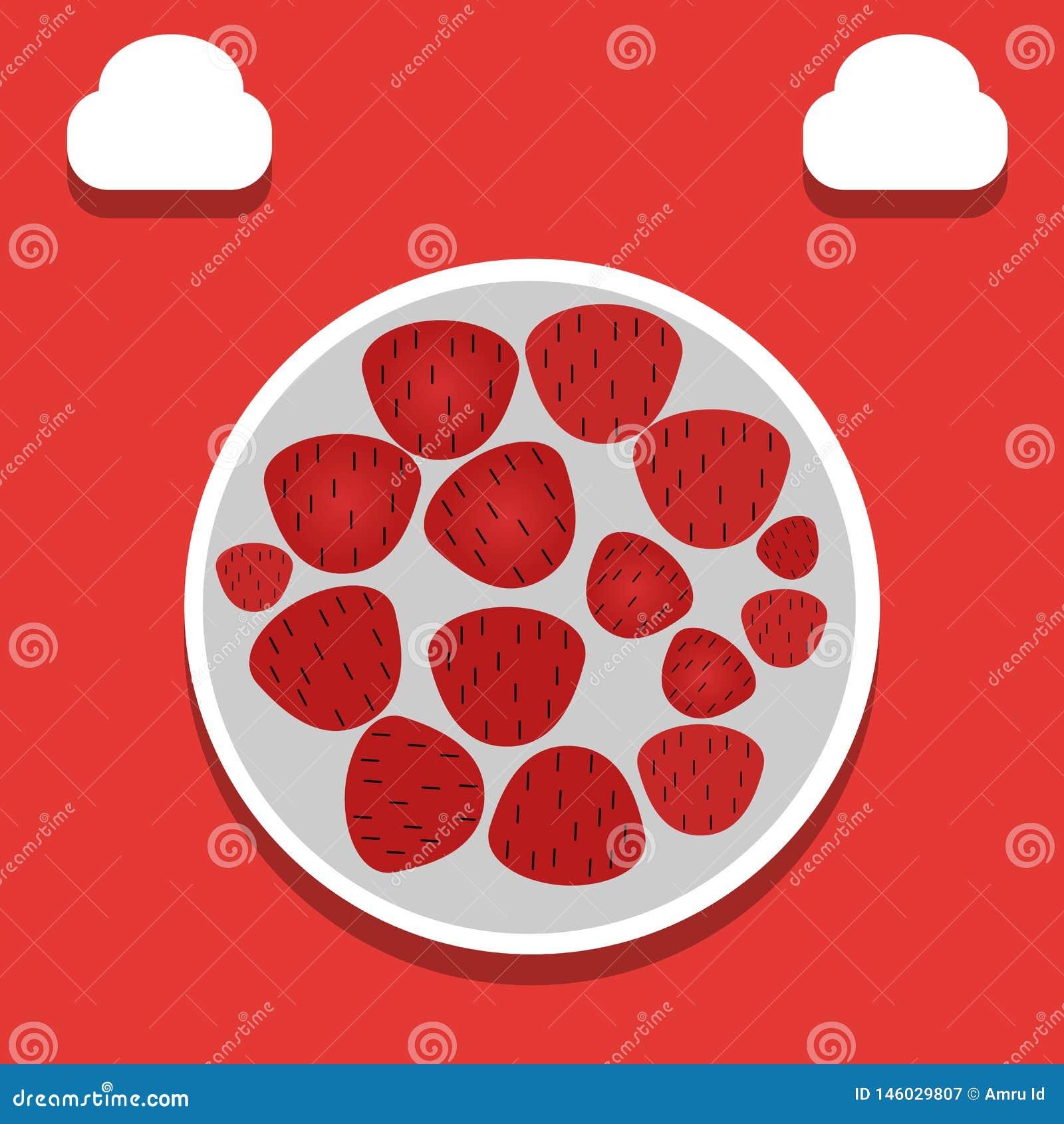 Strawberry illustration - vector