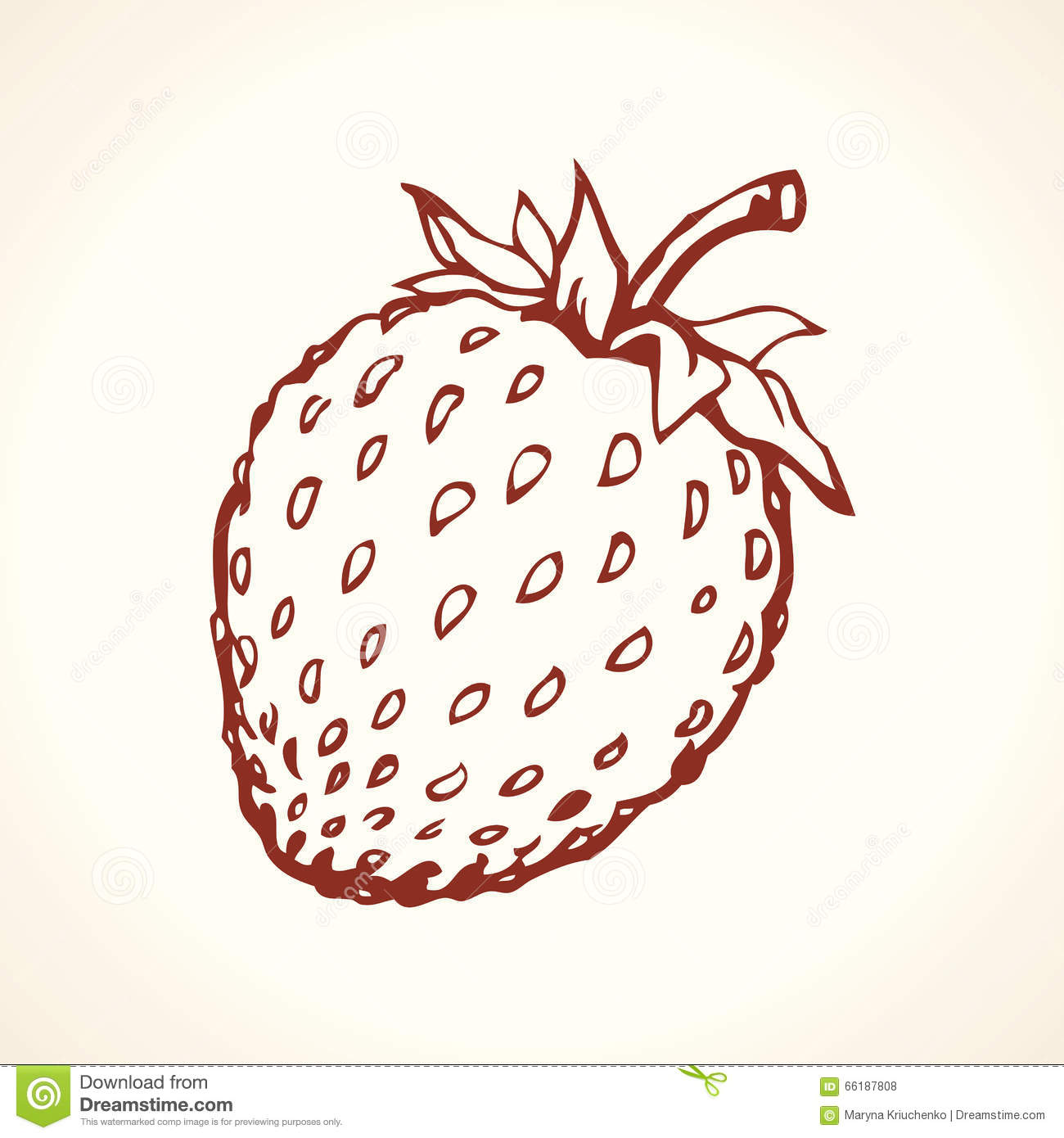 Strawberry Vector Drawing Stock Vector Image Of Contour