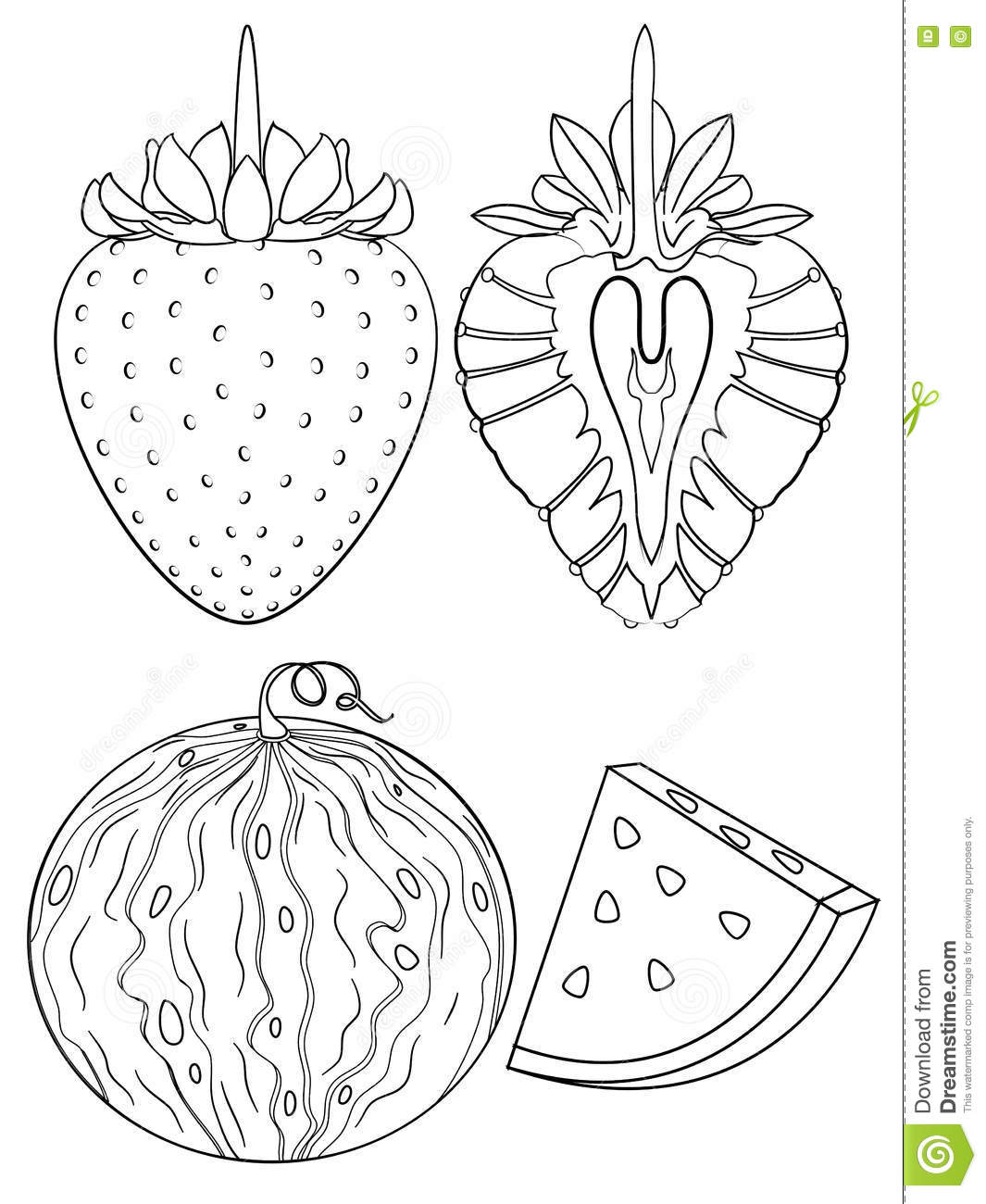 Strawberry And Watermelon Coloring Page Stock Photo - Image: 77236052