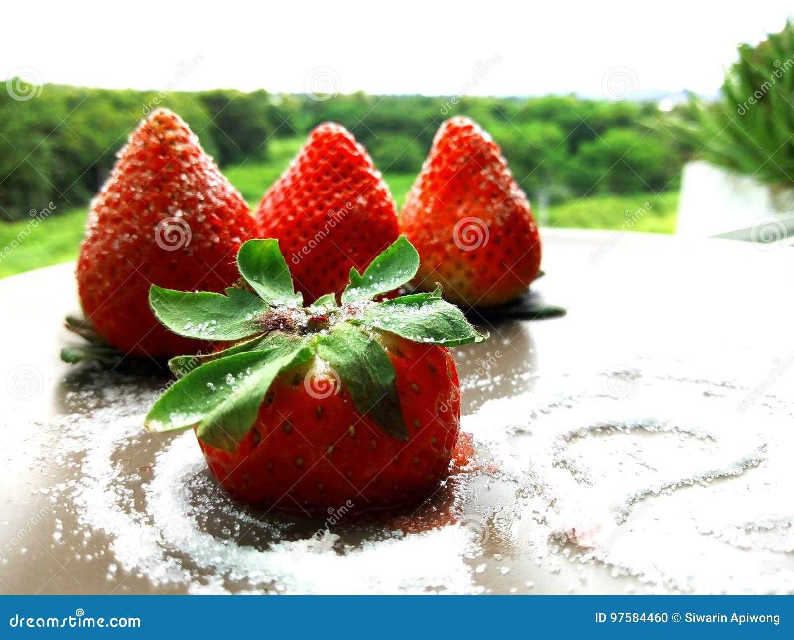 Strawbery-Zuckerglasur suger