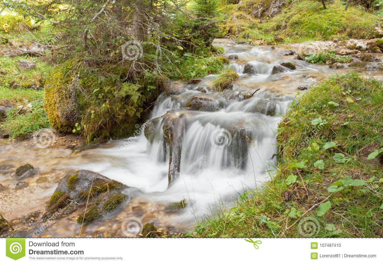 A stream flows in the forest, Italian Alps
