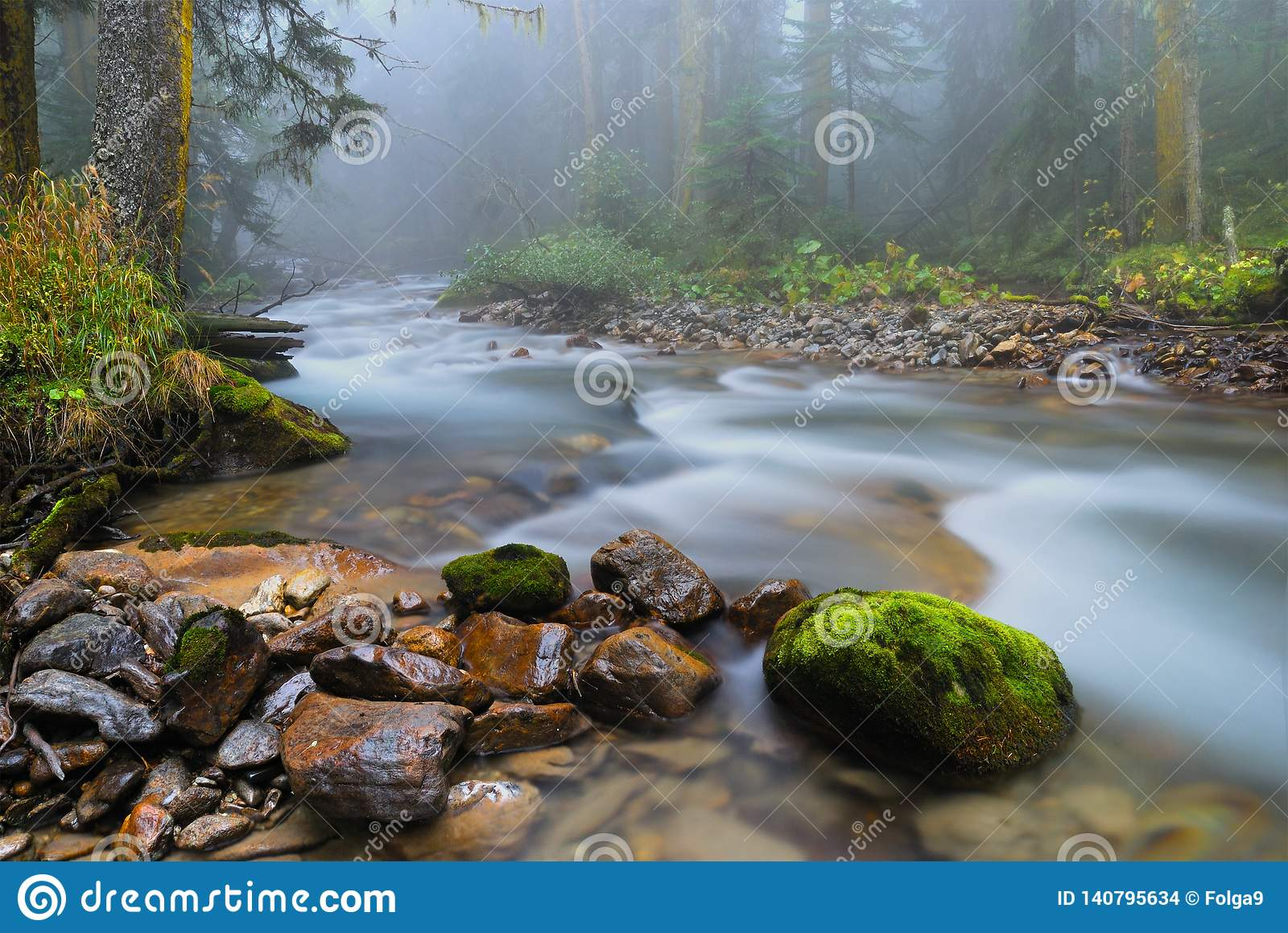 River In A Mountain Picturesque Forest And Fog In The