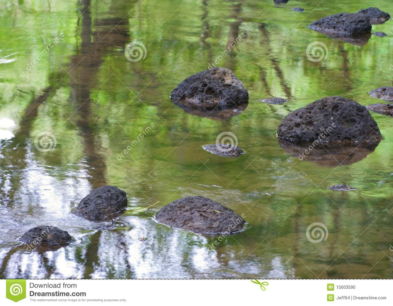 Stream with rocks,and trees reflection