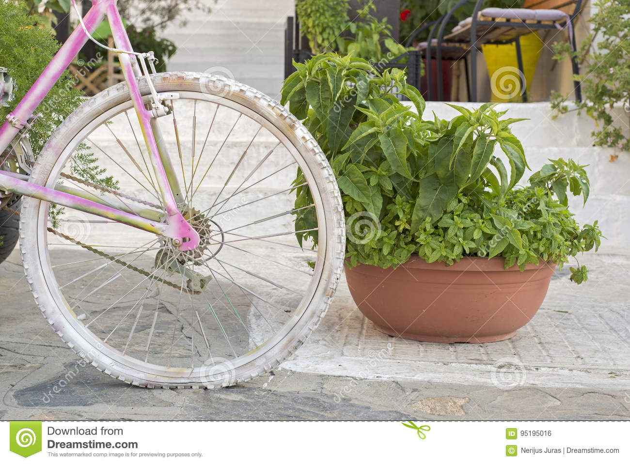 Street decoration with flowers and Bicycle