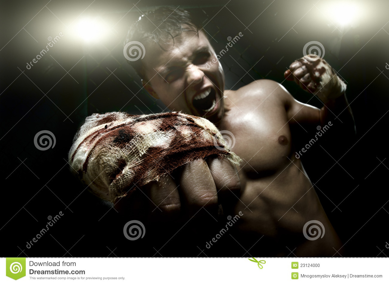 Download Street fighter stock photo. Image of dauntless, boxing - 23124000