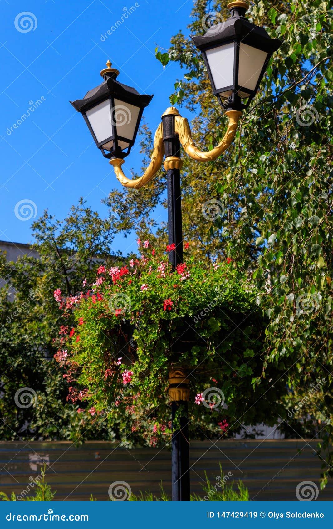 Street lantern decorated with geranium flowers in flowerpot