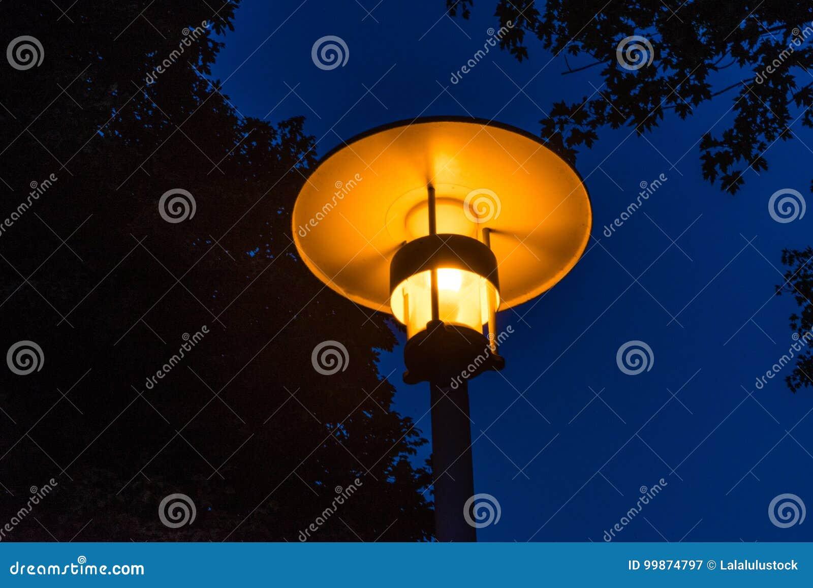Street light night view orange light with tree