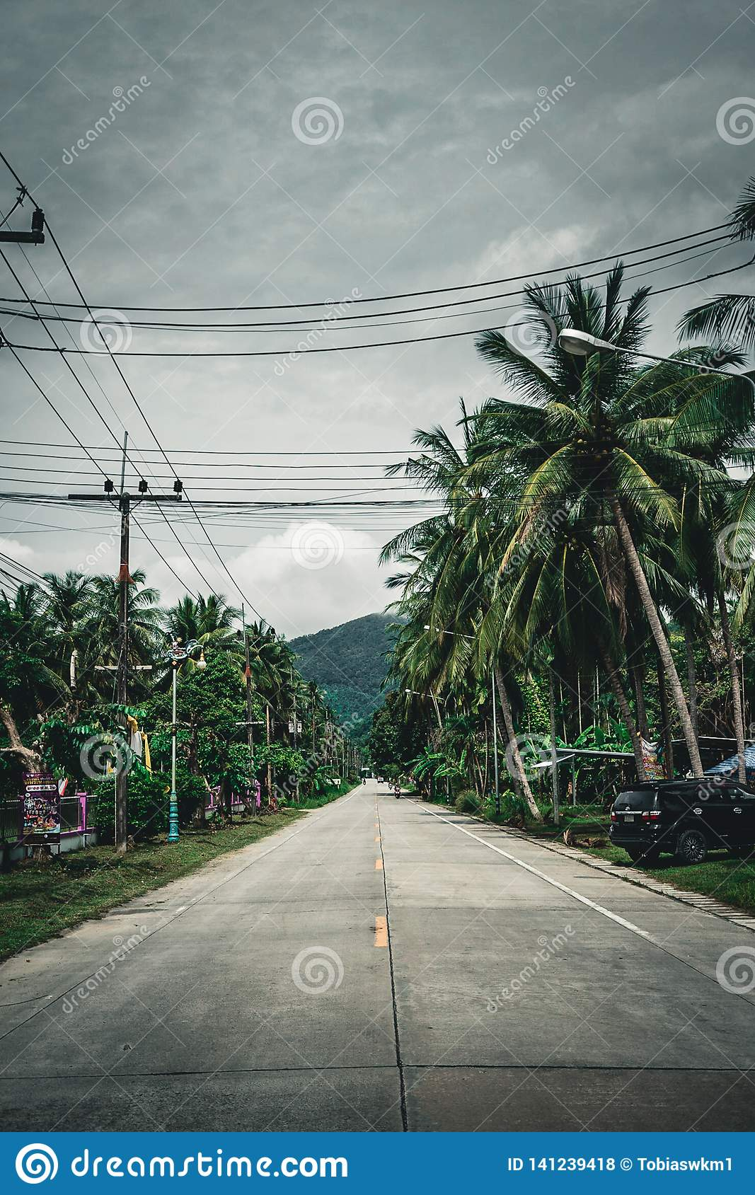 Palmtree street on koh phangan