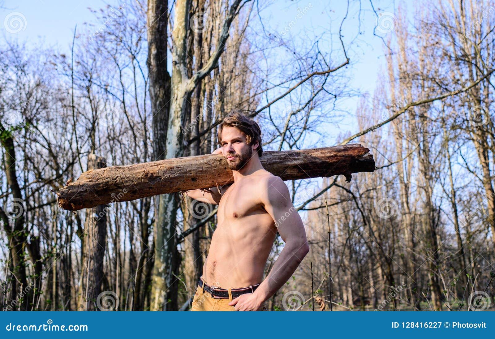 Lumberjack or woodman naked muscular torso gathering wood. Man brutal  lumberjack carry big log on shoulder.