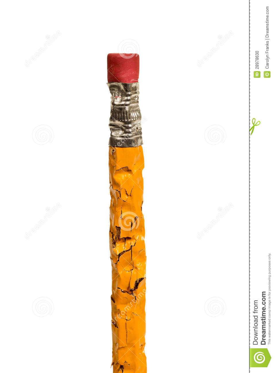 chew pencil photos free royalty free stock photos from dreamstime