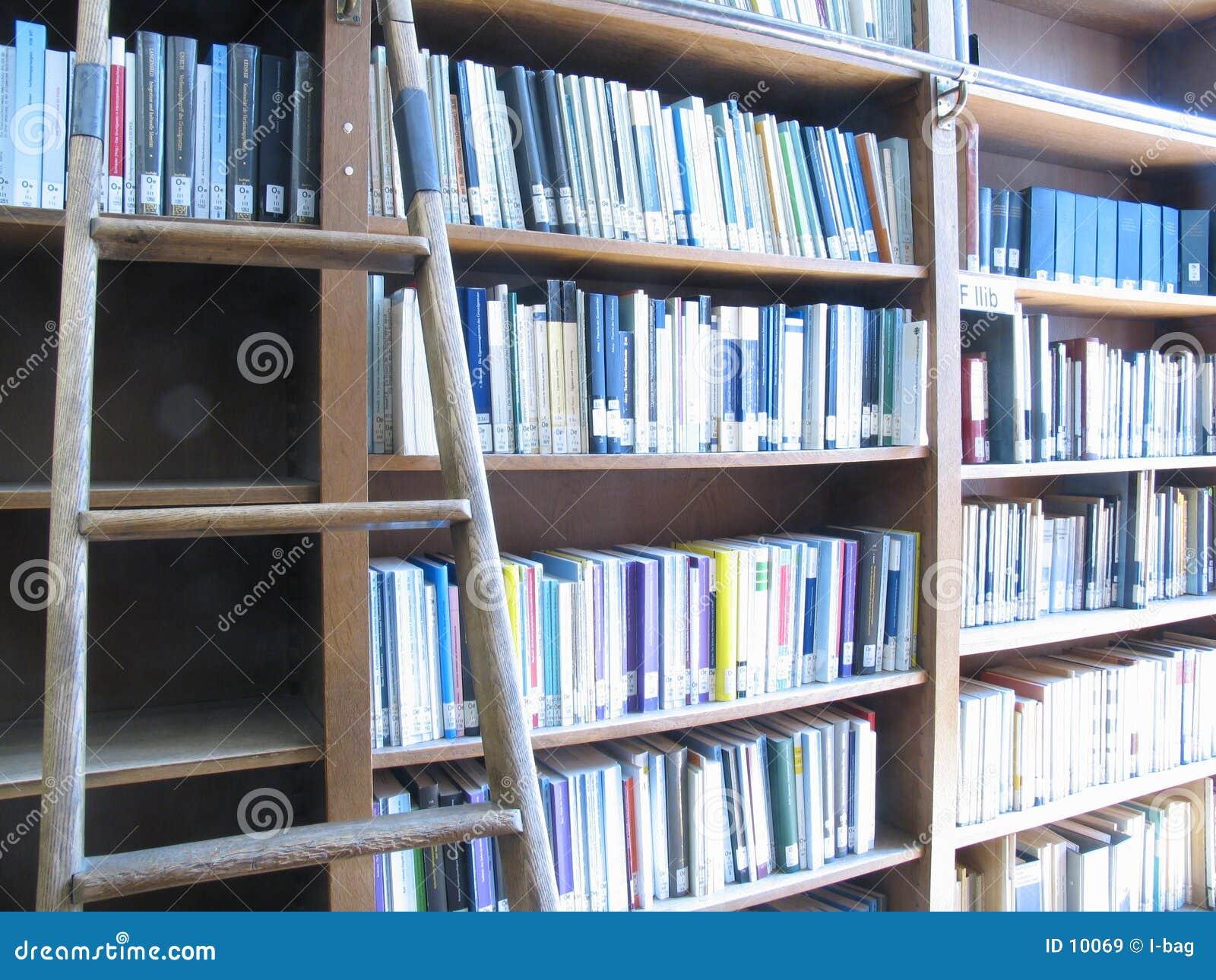 Strichleiter u. Bibliothek