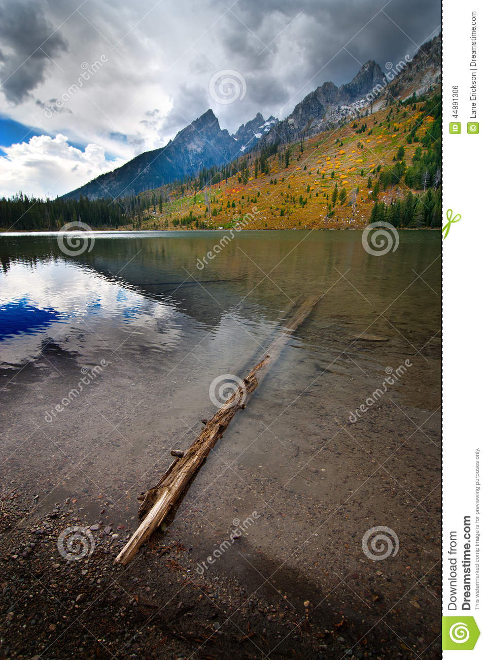 String Lake Grand Teton Reflection