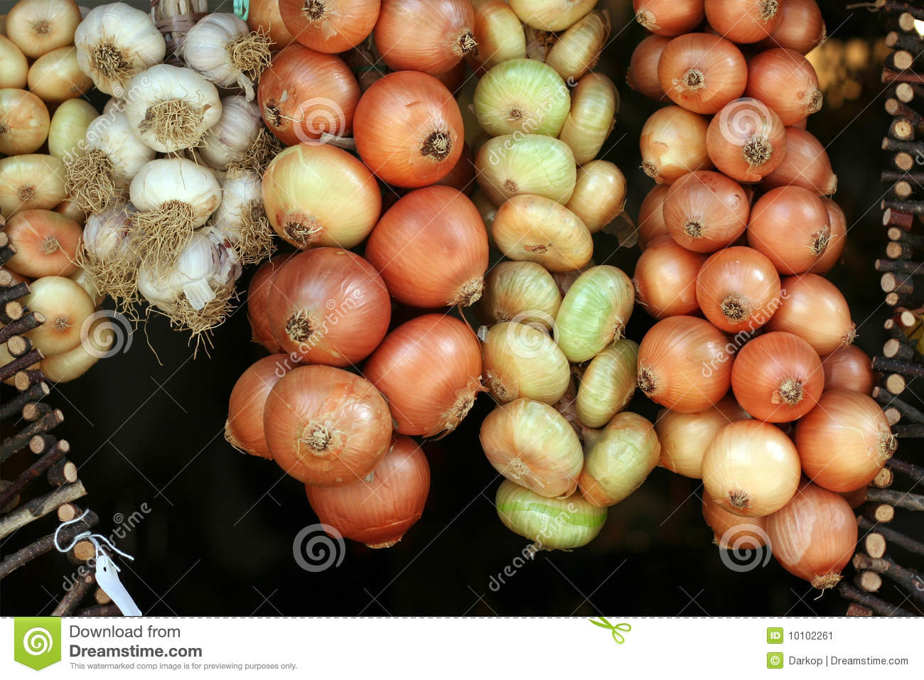 String of onion and garlic