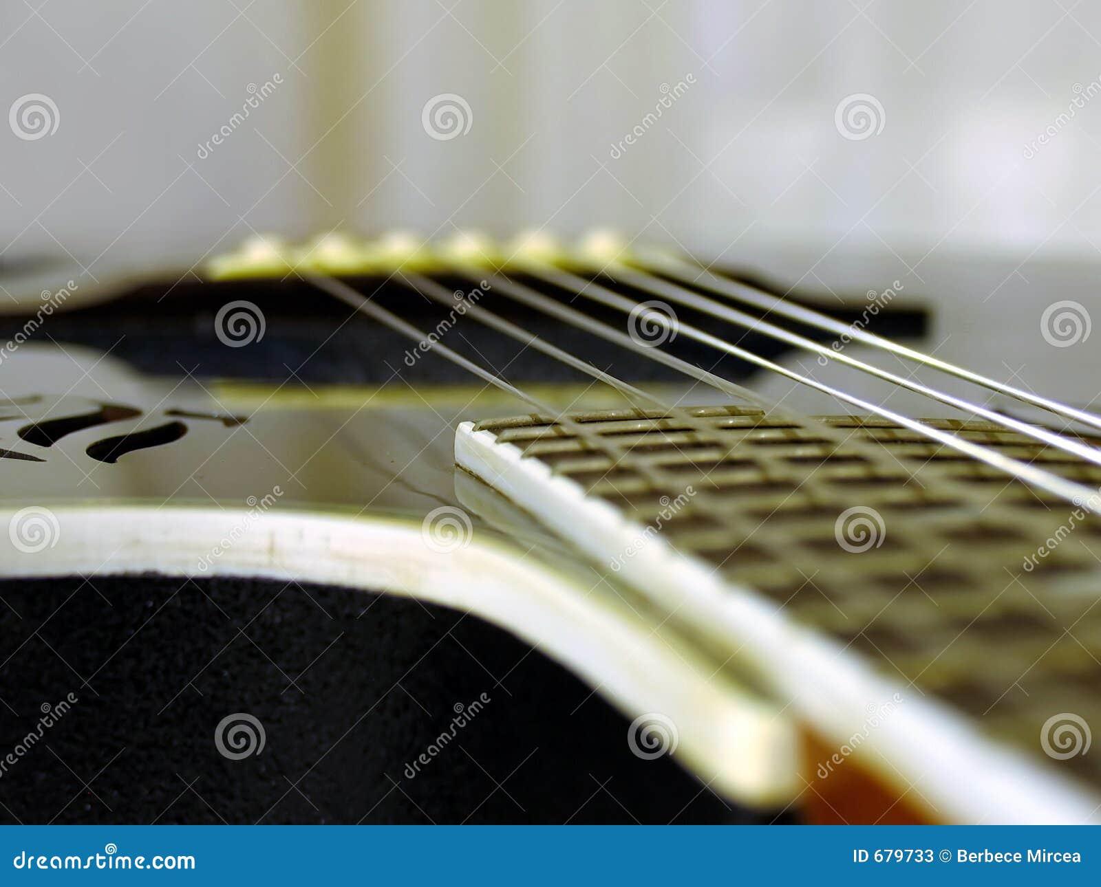 Stringhe della chitarra