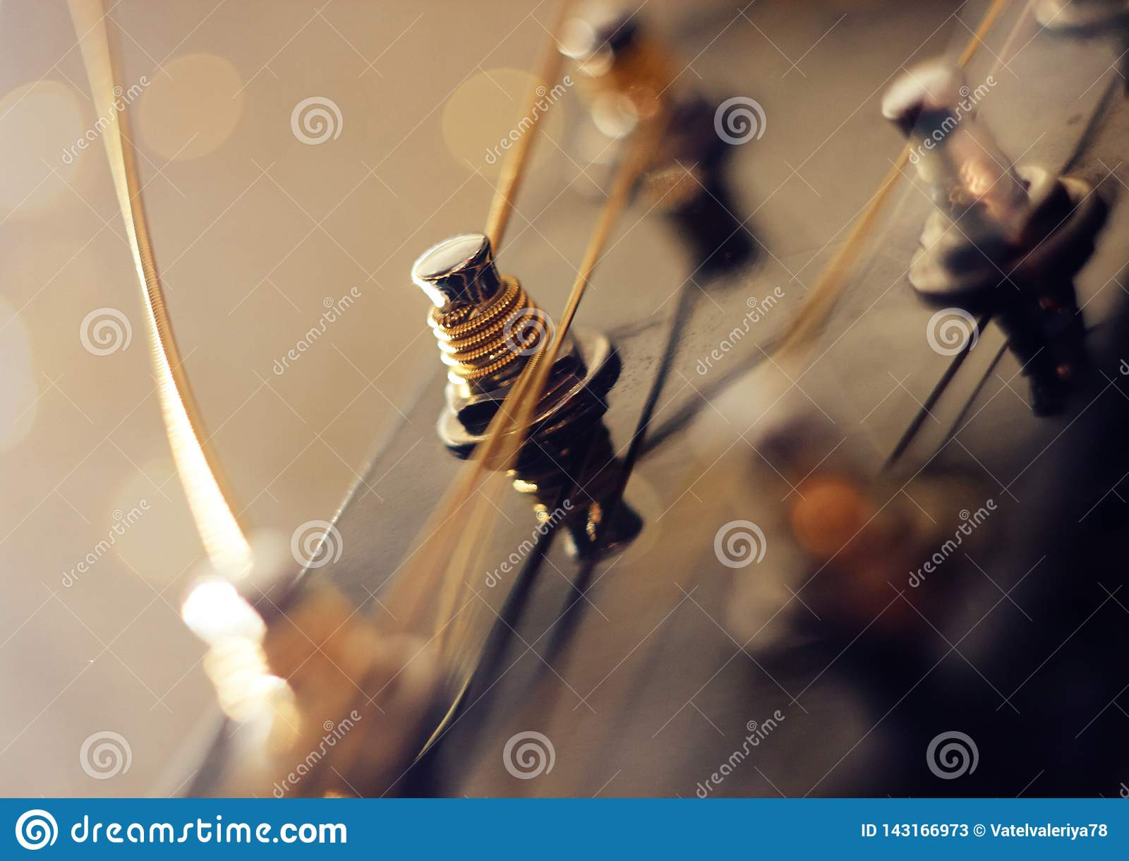 Strings strung on the neck of a guitar