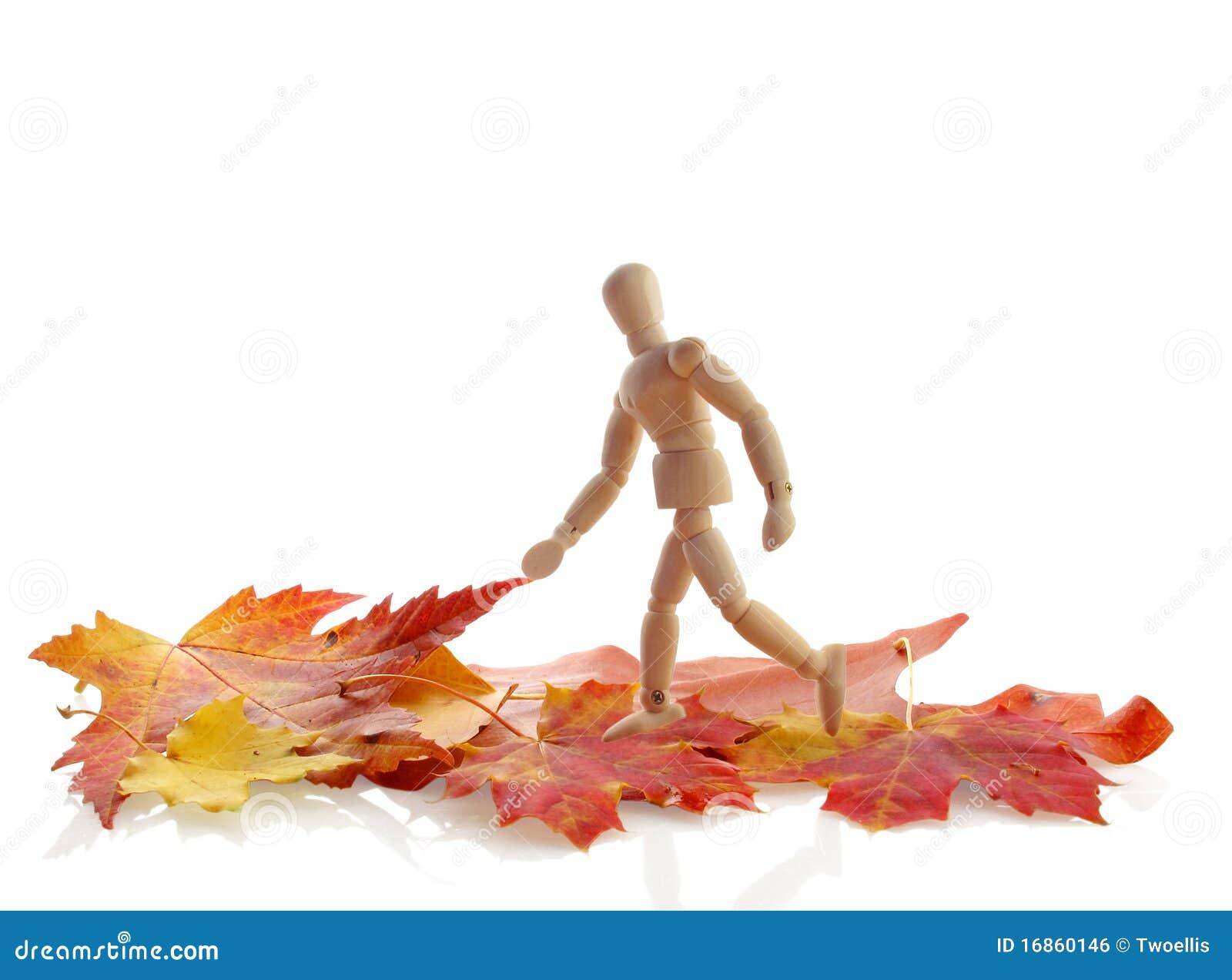 Stroll do outono
