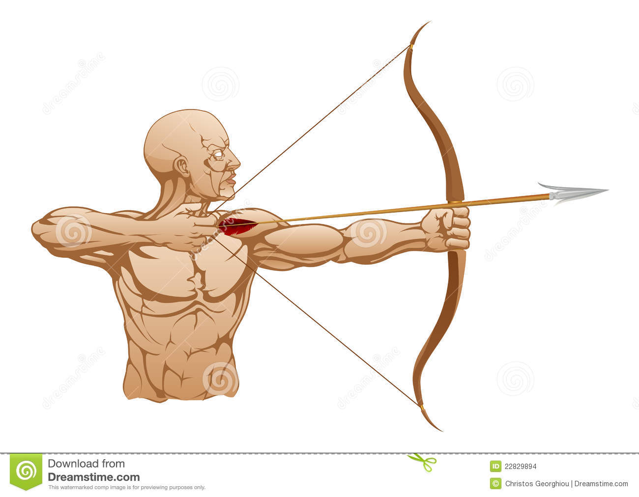 Illustration of strong archer holding bow and arrow ready to release.