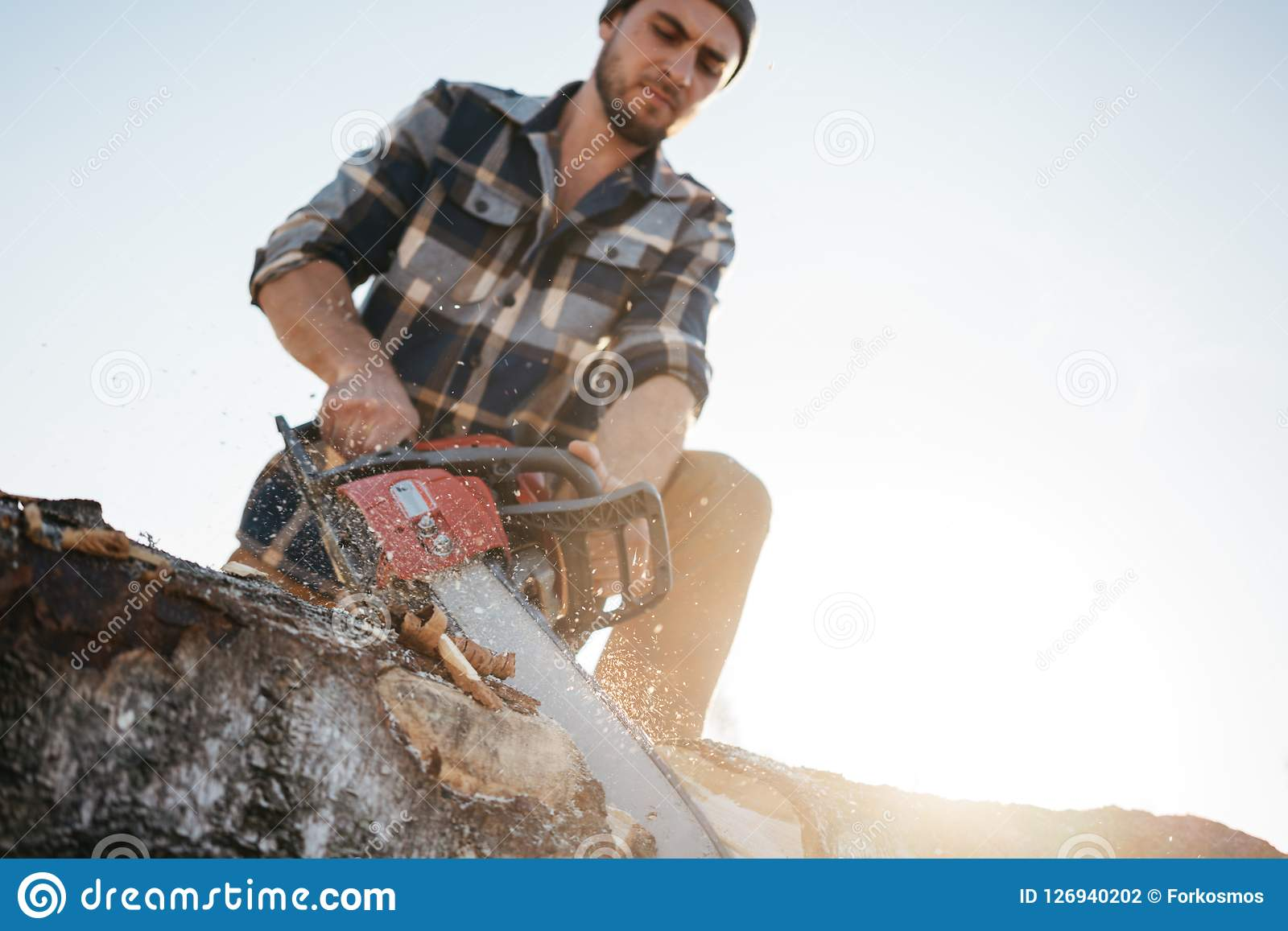 Strong bearded logger sawing a tree with chainsaw