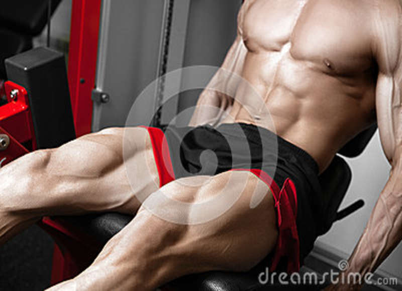 Strong bodybuilder training quads