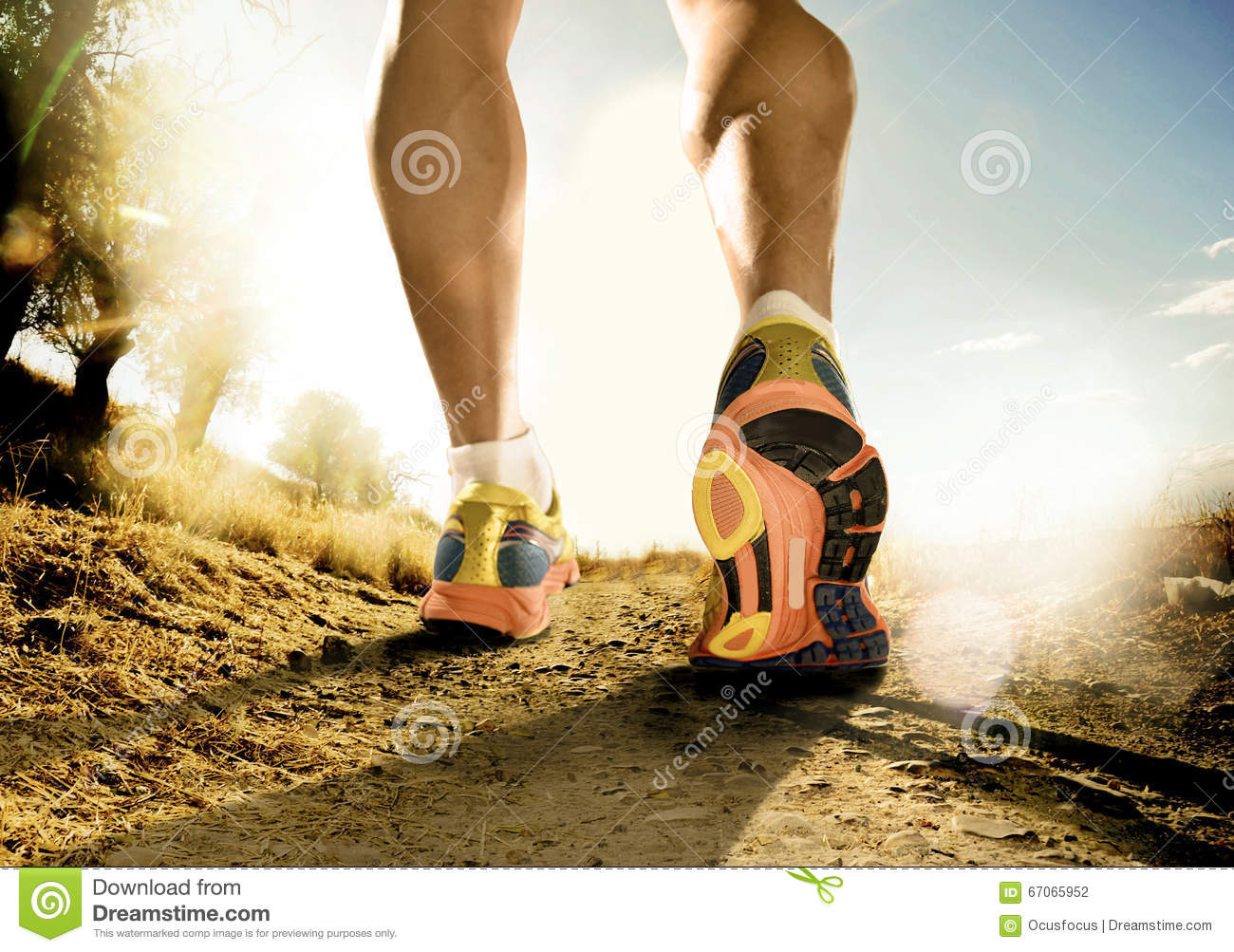 Download Strong Legs And Shoes Of Sport Man Jogging In Fitness Training Workout On Off Road Stock Photo - Image of race, competition: 67065952