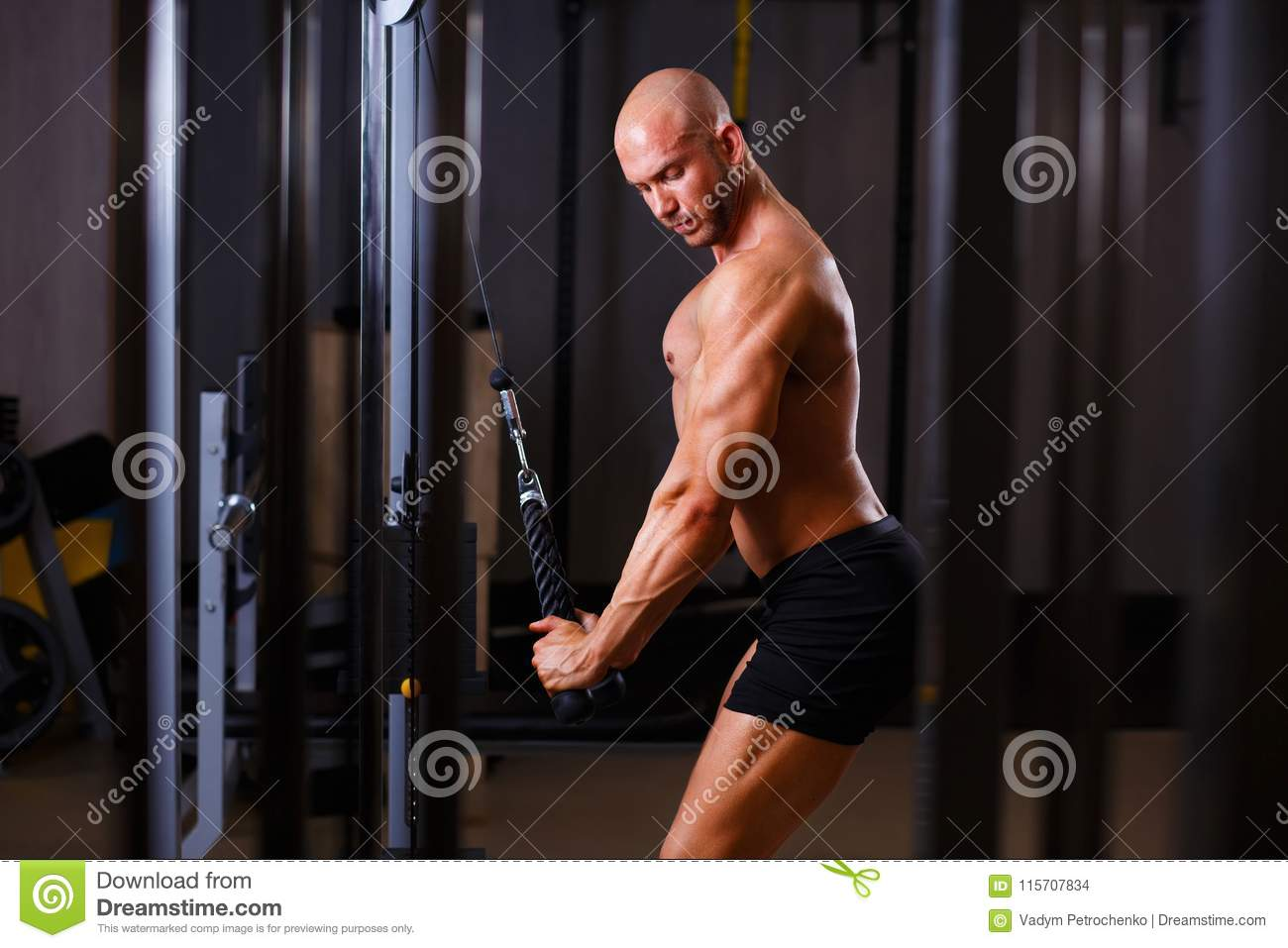 Strong ripped bald man pumping iron. Bodybuilder working out wit