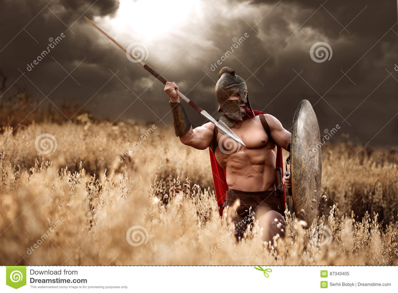 Strong Spartan Warrior In Battle Dress With A Shield And A