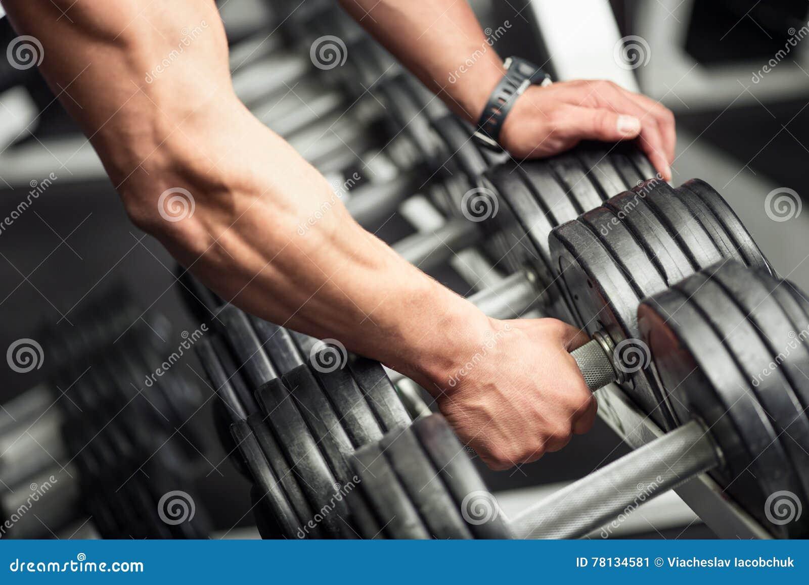 Strong well built bodybuilder lifting a dumbbell