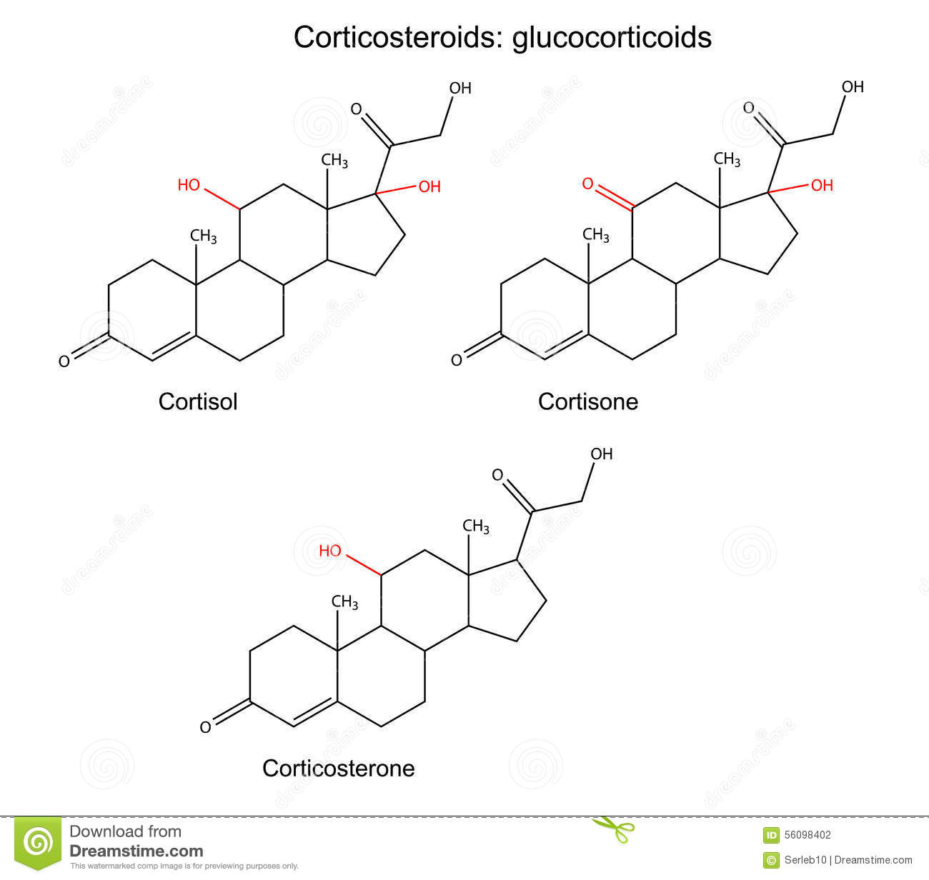 cortisone steroid injection weight gain