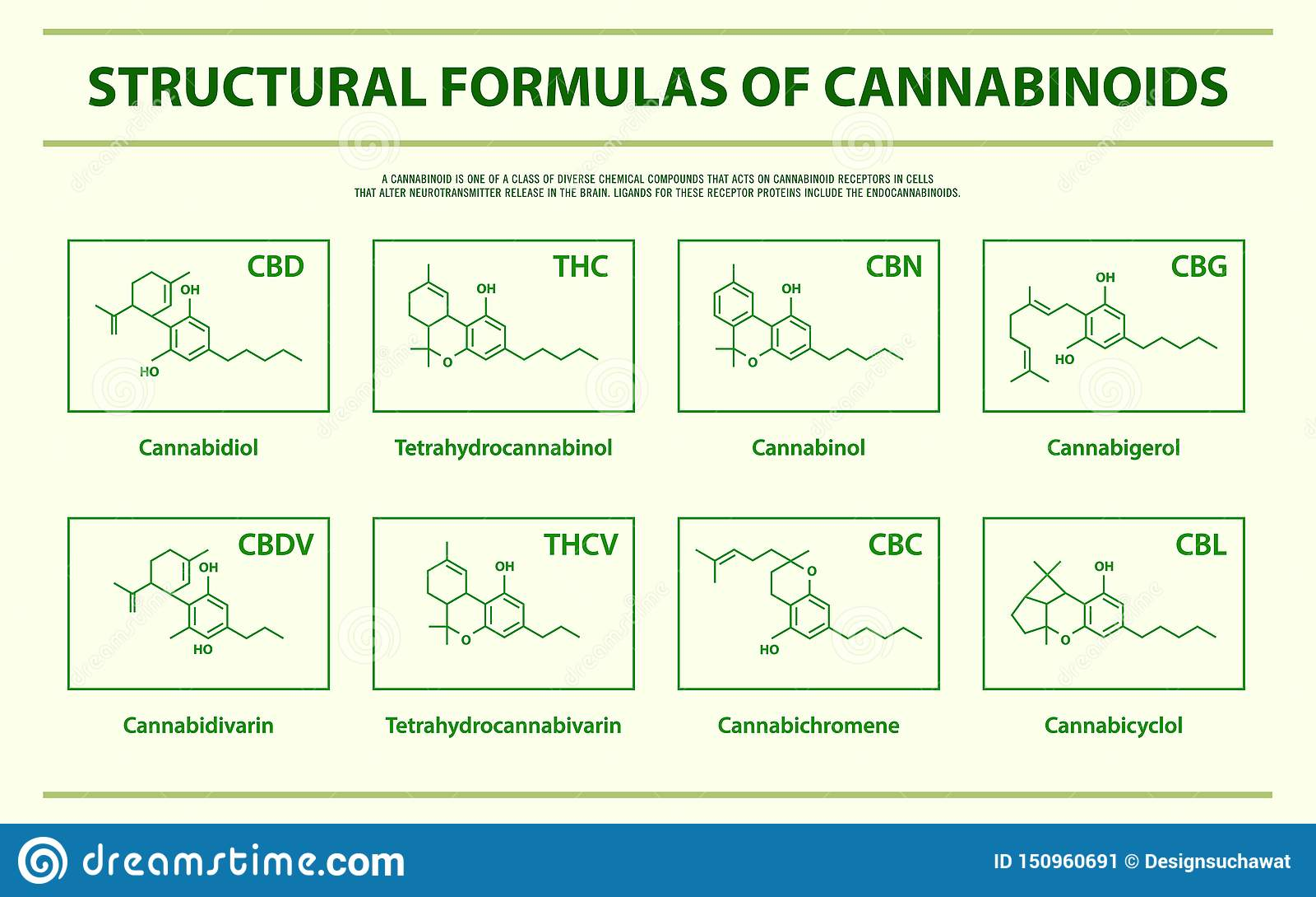 Structural Formulas of main natural cannabinoids horizontal infographic