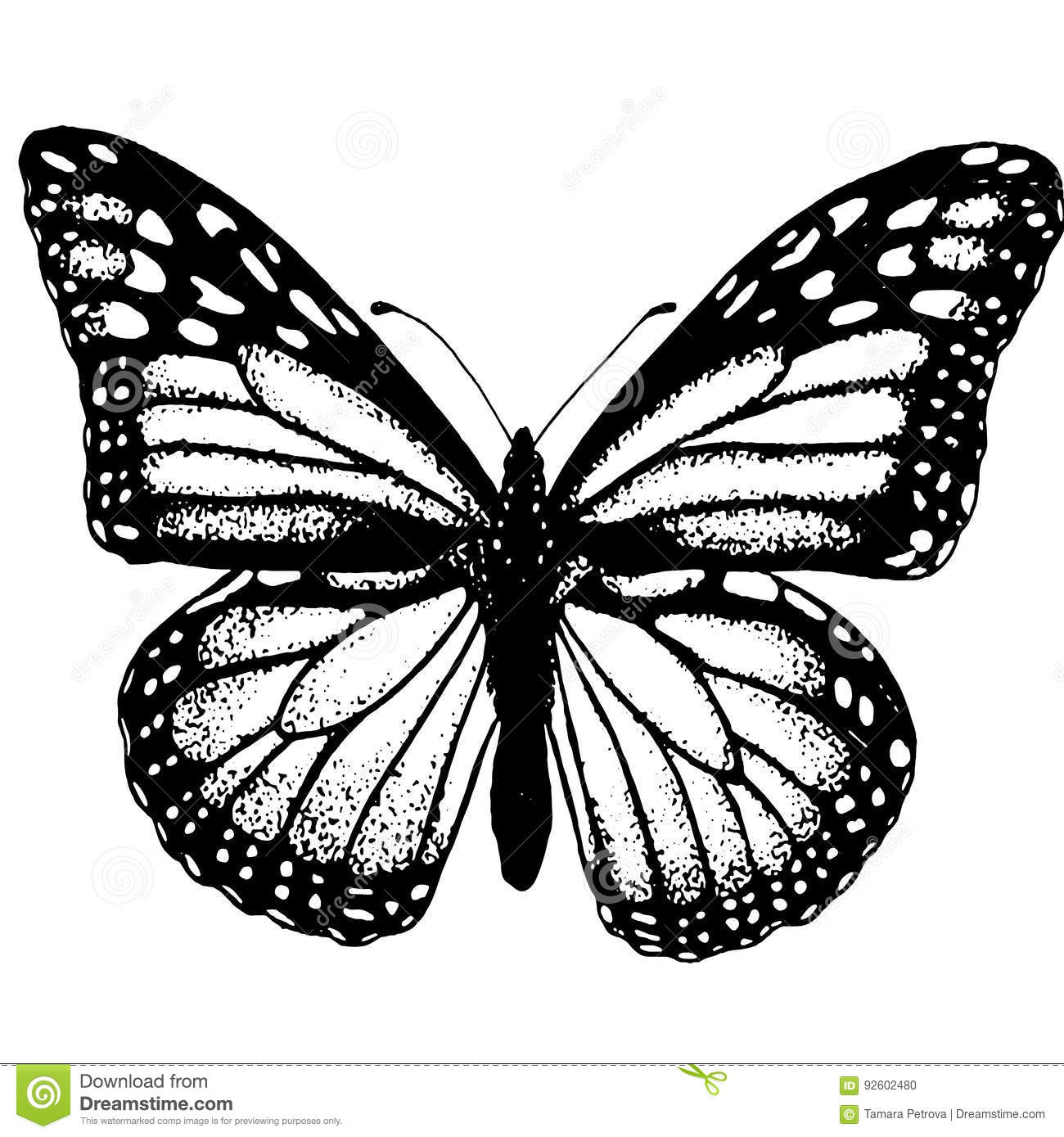 Lepidopterology section of entomology that studies butterflies