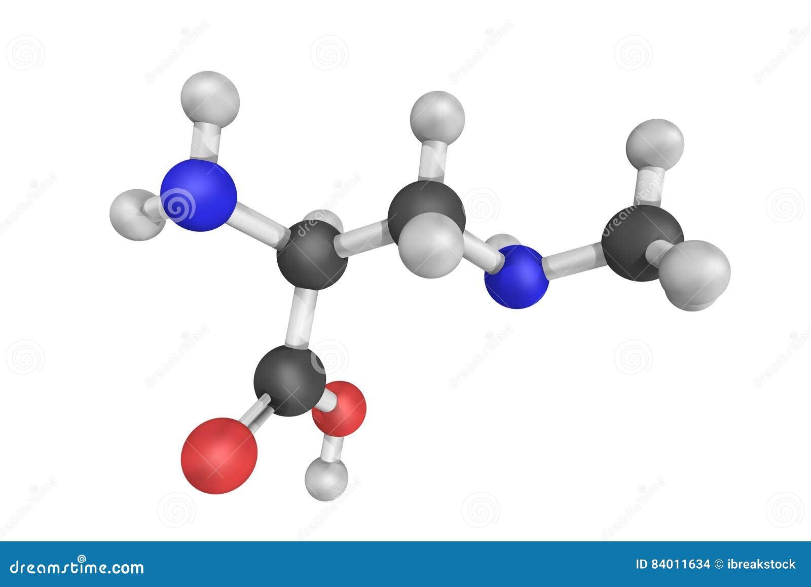 Structure 3d de bêta-methylamino-L-alanine, un non-proteinogenic