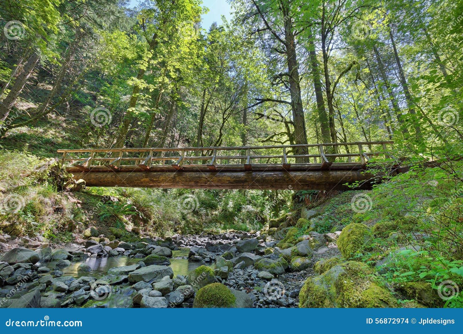 Structure en bois de pont de rondin au dessus de crique de for Structure de bois