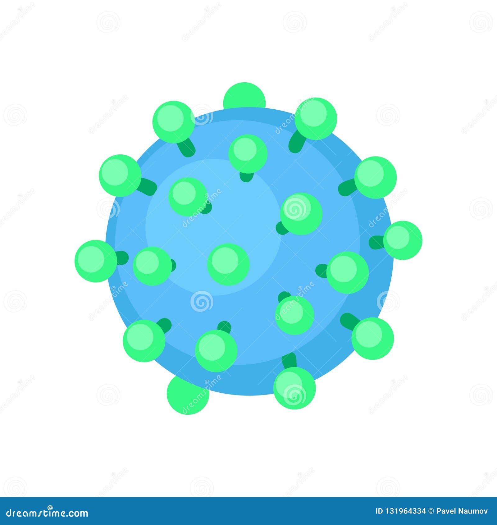 humán papillomavírus biológia