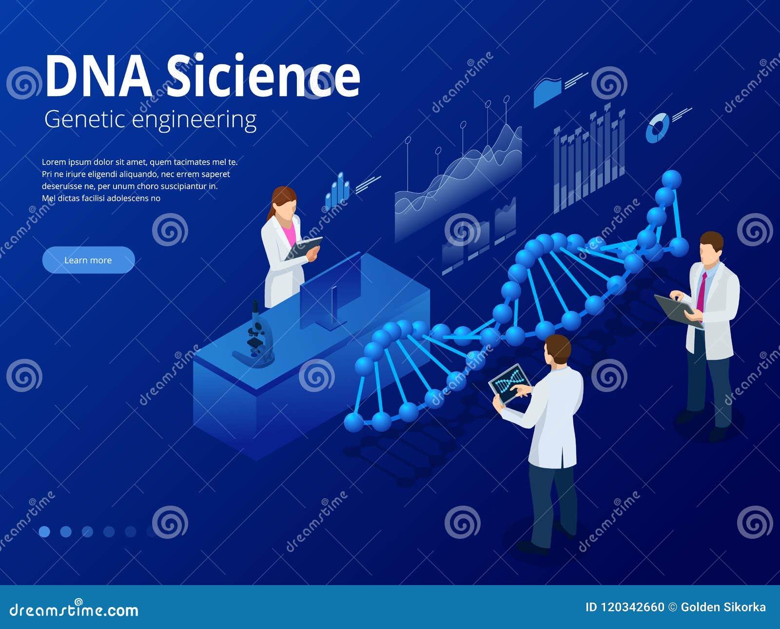 Datation réseau ADN