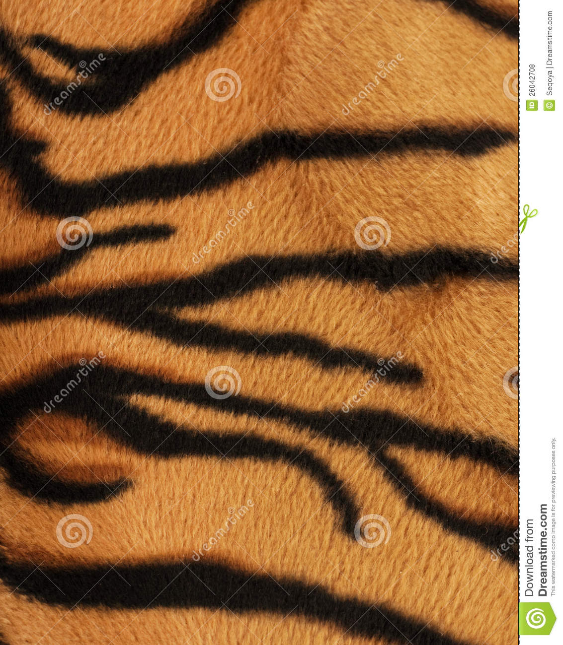 Structure of a skin of a tiger, striped