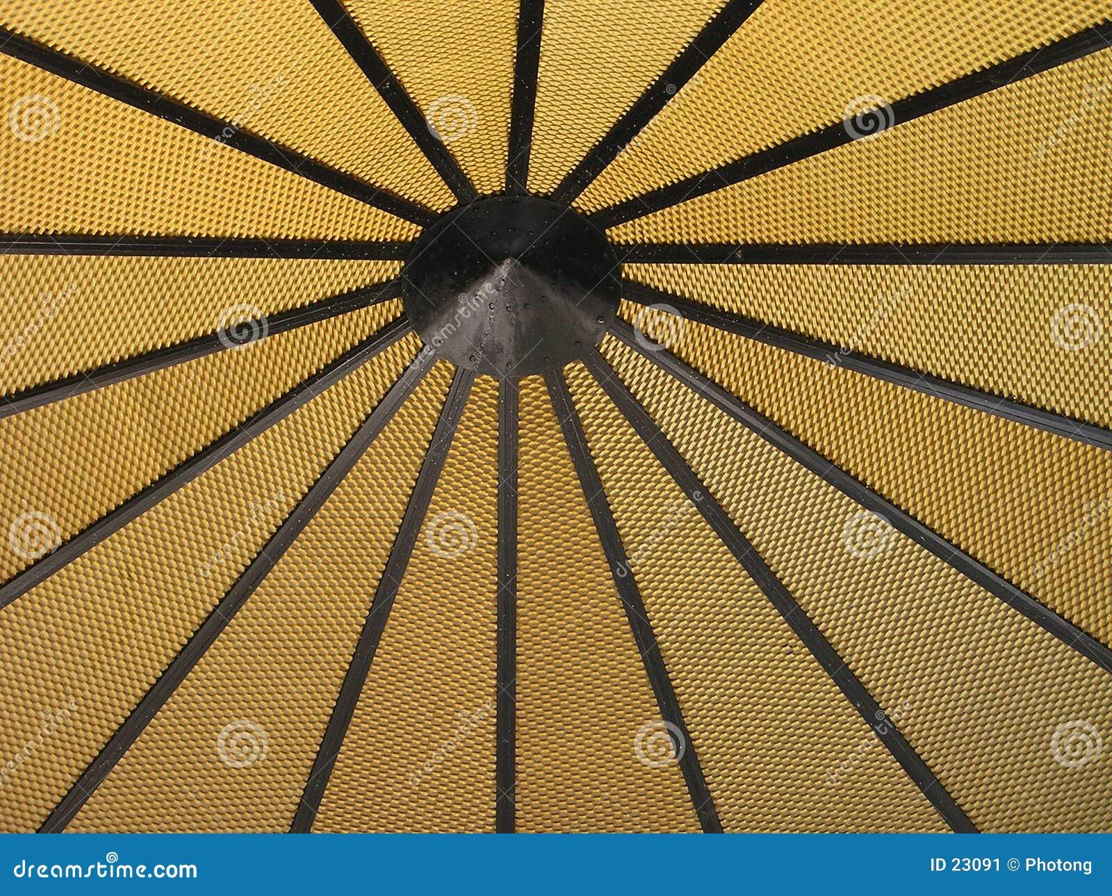 Struktura żółty