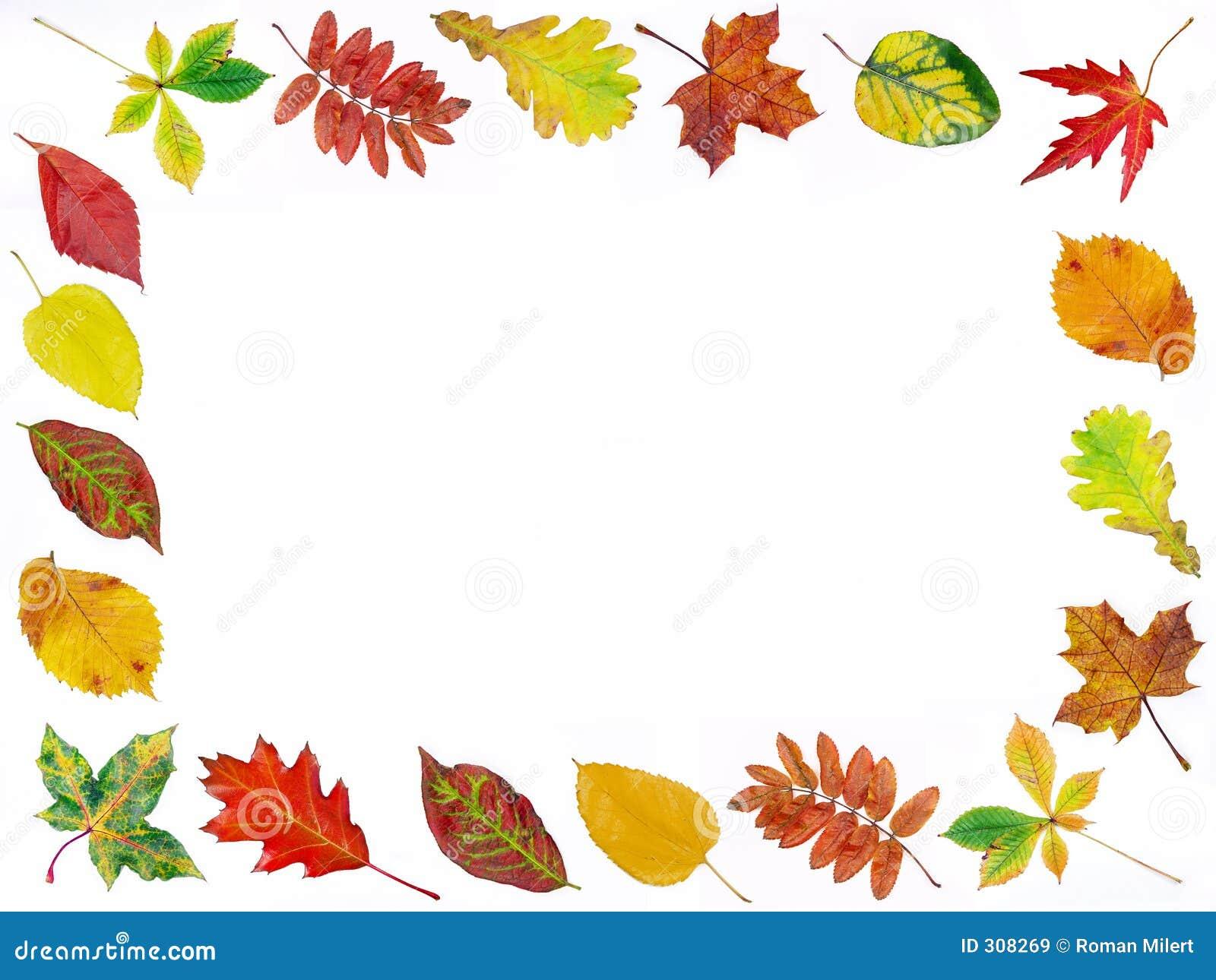 Struktura jesienią