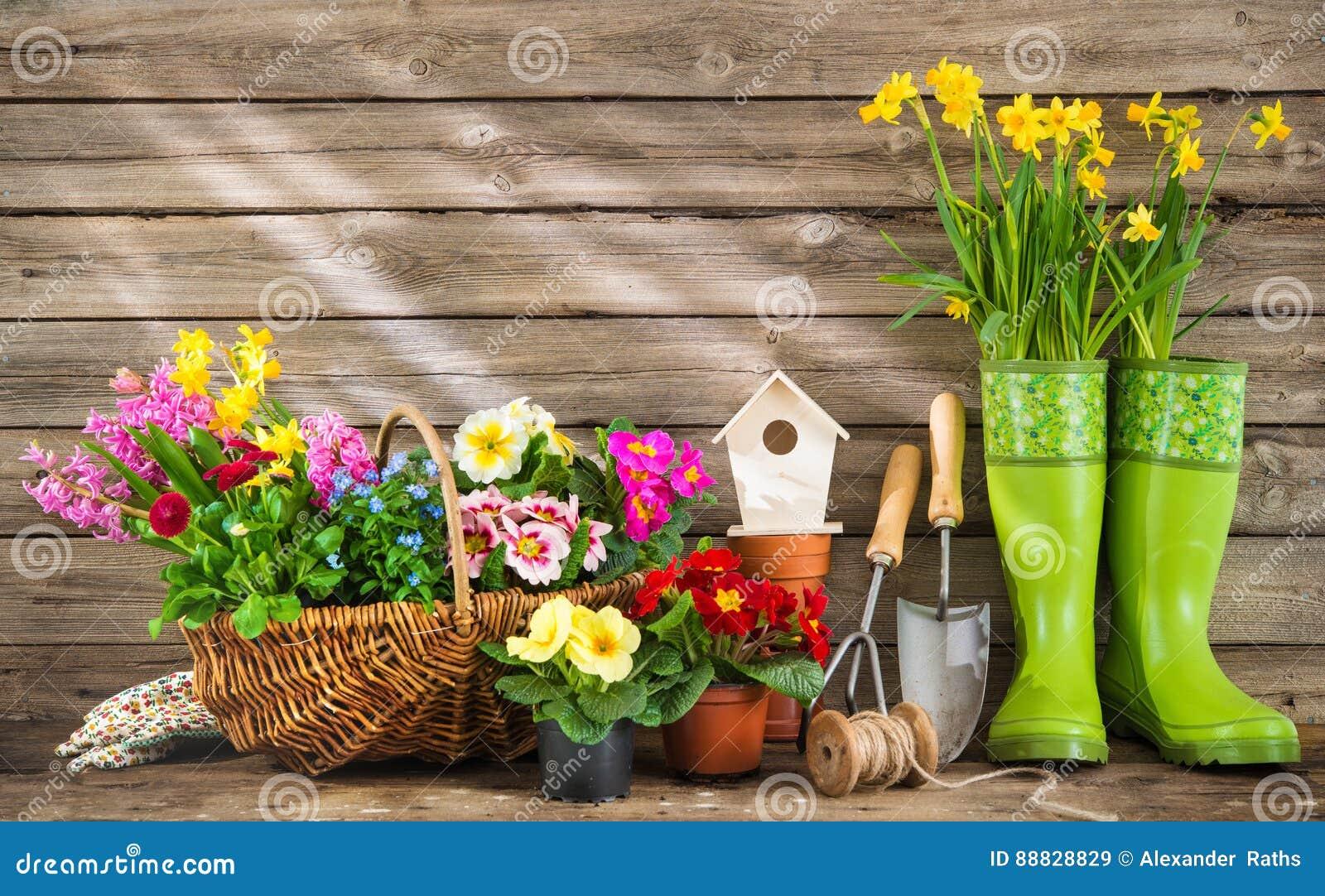 Giardinaggio E Fiori.Strumenti Di Giardinaggio E Fiori Della Molla Immagine Stock