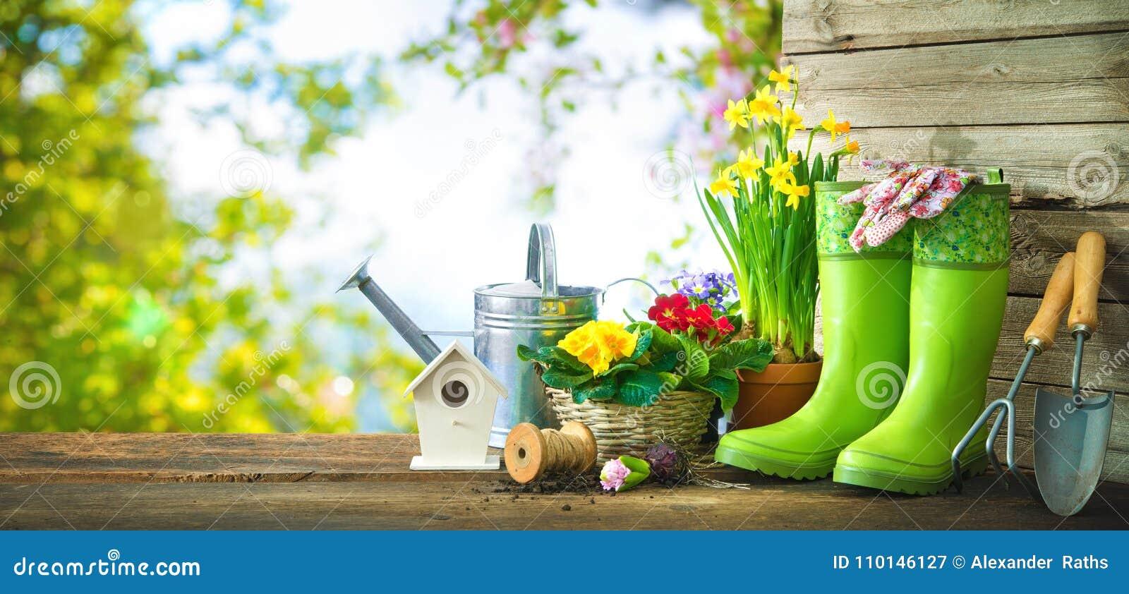 Strumenti di giardinaggio e fiori della molla sul terrazzo