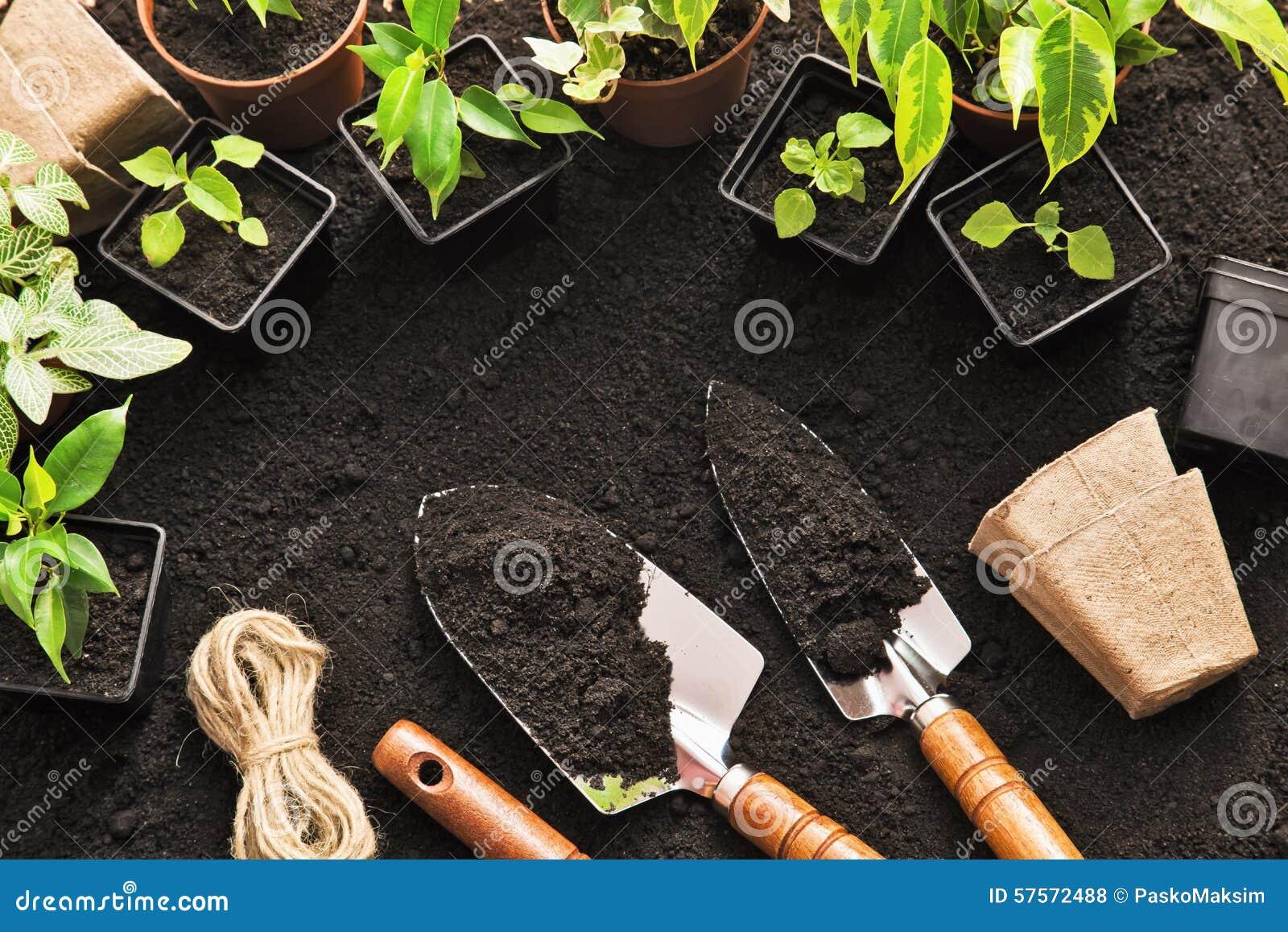 Strumenti e piante di giardinaggio