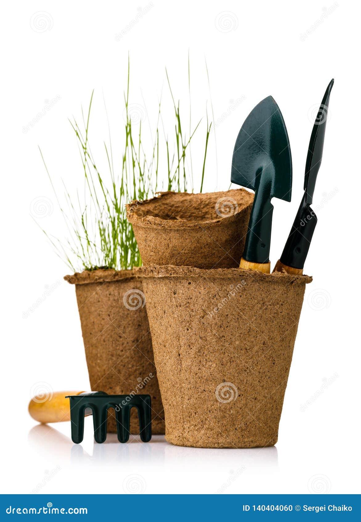 Strumenti per fare il giardinaggio: vaso della torba con le piantine e le pale isolate