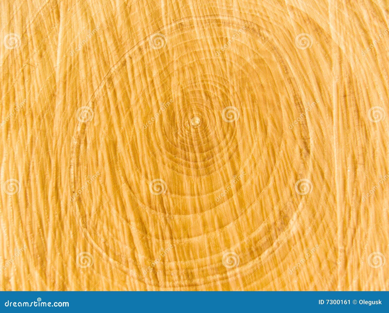 Struttura ad albero interna